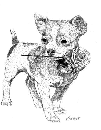 dessin-chien